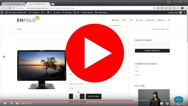 invoice-video